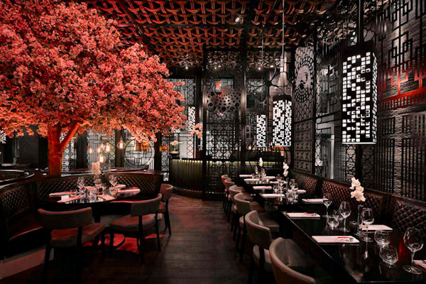 Best Oriental restaurants Manchester ~ Tattu